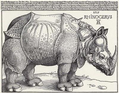 Albrecht Dürer: Rhinocerus. Holzschnitt, 1515. Berlin, Kupferstichkabinett. Quelle: www.zeno.org, http://www.zeno.org/nid/20004001567. Gemeinfrei.