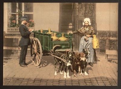 Anonym: Flämische Milchverkäuferin, Antwerpen, Belgien. Photochrom-Druck, ca. 1890-1900. Bildquelle: Library of Congress Prints and Photographs Division, LC-DIG-ppmsc-05620,, http://www.loc.gov/item/2001697878/. Gemeinfrei.